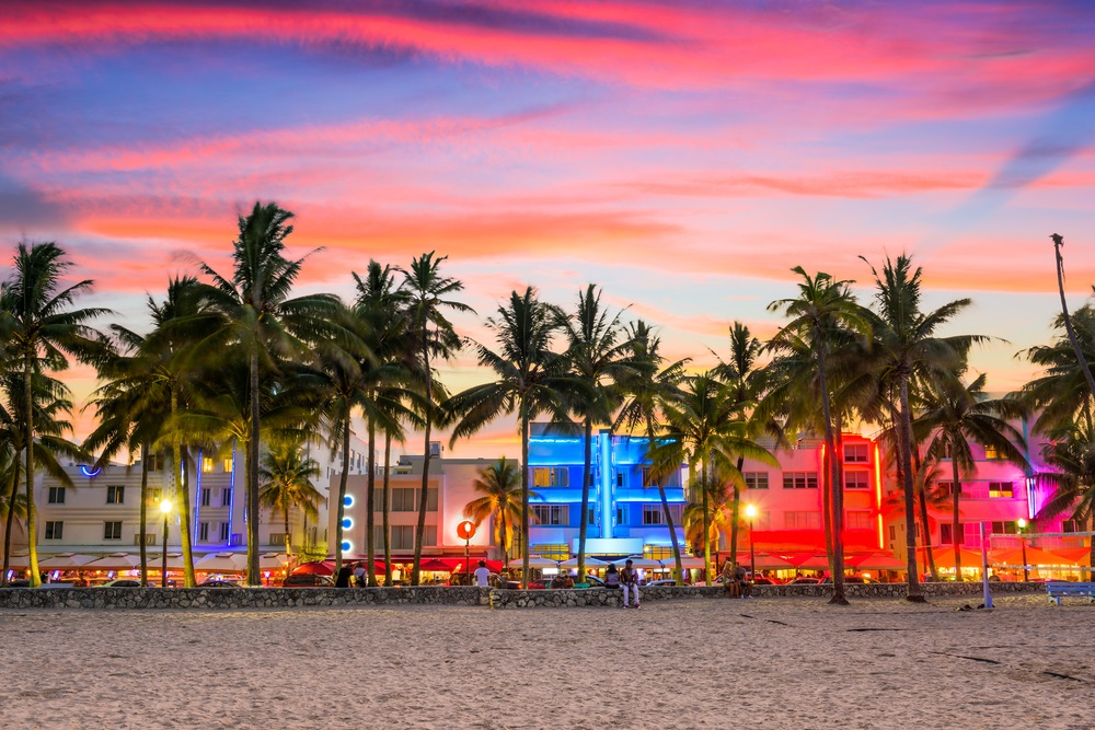 Everything You Need to See and Do in Miami