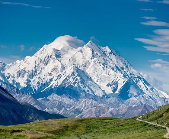 Denali National Park Explorer & Alaskan cruise