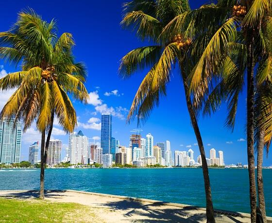Miami Beach Stay and Caribbean Encore Cruise