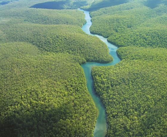 The Amazon, Brazil & Caribbean Explorer