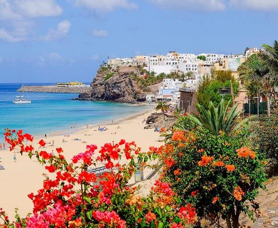 The Beautiful Canaries